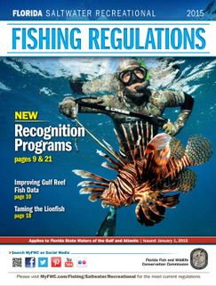 Link to FWC Saltwater and hunting regulations