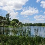Lake Charlie image
